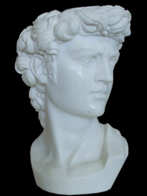 Statuary white marble head sculpture inspired by the famous work of Michelangelo Buonarroti, the David. Entirely hand-sculpted to a lesser extent than the original, it makes this small object affordable for everyone, also in terms of space.